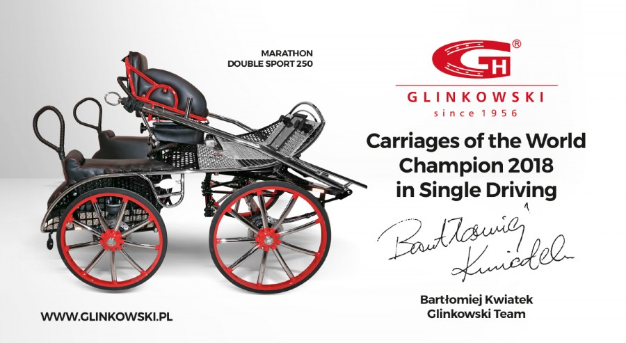 Glinkowski horse carriage Double Sport 250